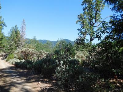 Josephine County Residential Lots & Land For Sale: 300 School Street