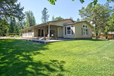 Rogue River Single Family Home For Sale: 3134 W Evans Creek Road