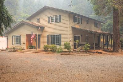 Josephine County Single Family Home For Sale: 1040 Lower Wolf Creek Road