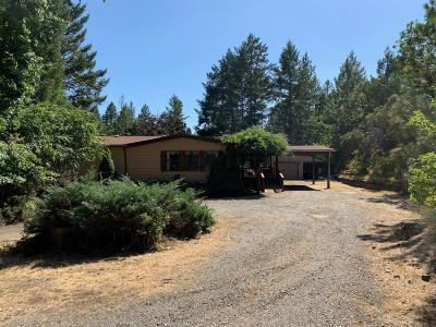 Grants Pass Single Family Home For Sale: 520 Green Tree Loop