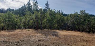 Merlin, Sunny Valley, Wimer, Rogue River, Wilderville, Grants Pass Residential Lots & Land For Sale: 297 Whitaker Lane