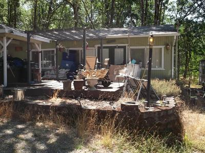 Jackson County, Josephine County Single Family Home For Sale: 5483 Pleasant Creek Road