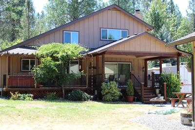 Rogue River Single Family Home For Sale: 4627 E Evans Creek Road