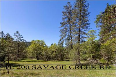 Merlin, Sunny Valley, Wimer, Rogue River, Wilderville, Grants Pass Residential Lots & Land For Sale: 200 Savage Creek Road