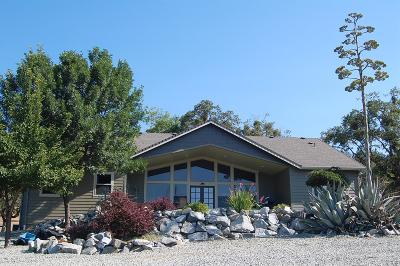 Merlin, Sunny Valley, Wimer, Rogue River, Wilderville, Grants Pass Single Family Home For Sale: 1338 Missouri Flat Road