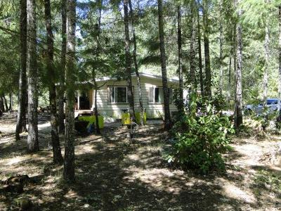 Jackson County, Josephine County Single Family Home For Sale: 120 Airport Drive