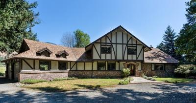 Merlin, Sunny Valley, Wimer, Rogue River, Wilderville, Grants Pass, Hugo, Murphy, Wolf Creek Single Family Home For Sale: 572 Avenue de Teresa