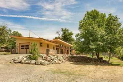 Ruch Single Family Home For Sale: 2200 Little Applegate Road