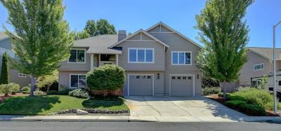 phoenix Single Family Home For Sale: 316 Meadow View Drive