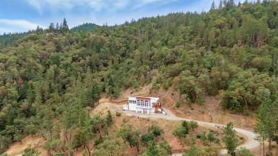 Central Point Single Family Home For Sale: 4299 Old Stage Road