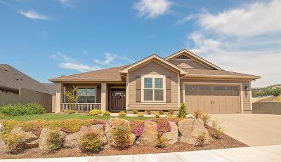 Medford Single Family Home For Sale: 3969 Sunleaf Avenue