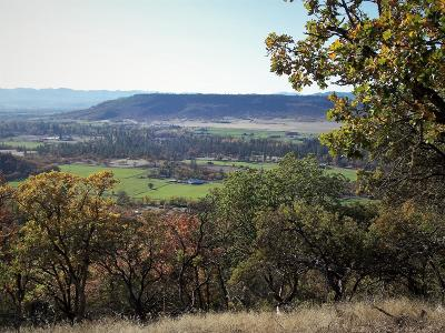 Jackson County, Josephine County Residential Lots & Land For Sale: Mount Castle Drive