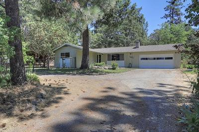 Jackson County, Josephine County Single Family Home For Sale: 855 Upper Applegate Road