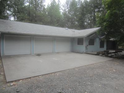 Josephine County Single Family Home For Sale: 396 Pyle Drive