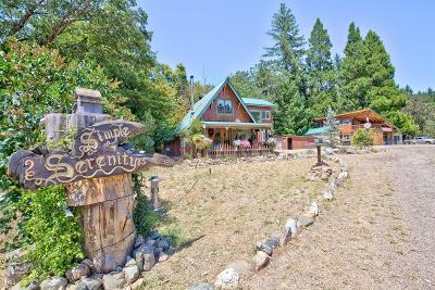 Selma Single Family Home For Sale: 8570 Deer Creek Road