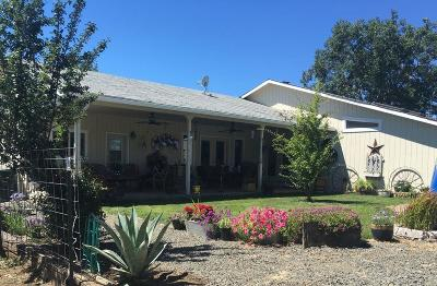 white city Single Family Home For Sale: 4272 Beagle Road