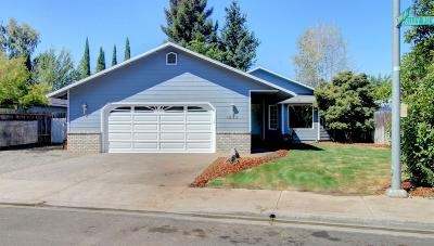 Medford Single Family Home For Sale: 1533 Valley View Drive