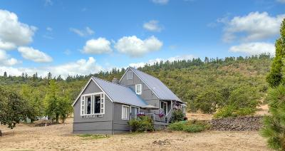 white city Single Family Home For Sale: 115 Loch Lomond Drive