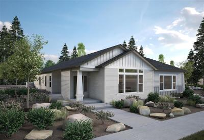 Central Point Single Family Home For Sale: 458 Cheney Loop