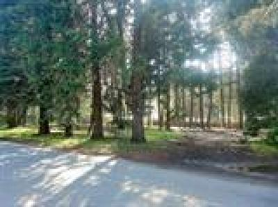 Josephine County Residential Lots & Land For Sale: 130 Sawyer Avenue S