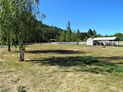 Jackson County, Josephine County Single Family Home For Sale: 26691 Hwy 62