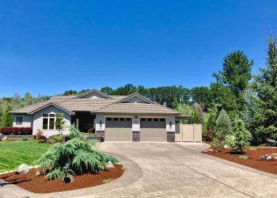 Eagle Point Single Family Home For Sale: 213 Princeville Drive