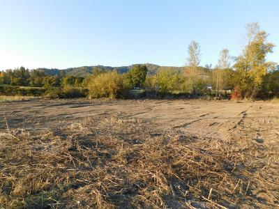 Josephine County Residential Lots & Land For Sale: 434 Lincoln Road