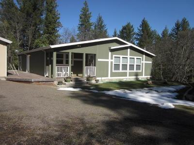 Ashland Single Family Home For Sale: 4780 Old Hwy 99 S