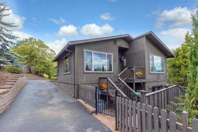 Ashland Single Family Home For Sale: 157 Church Street