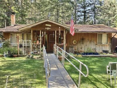 Rogue River Single Family Home For Sale: 9111 W Evans Creek Road