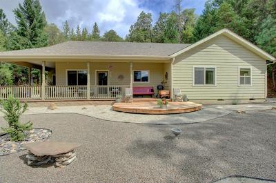 Josephine County Single Family Home For Sale: 665 Winona Road