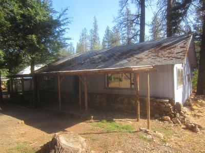 Jackson County, Josephine County Single Family Home For Sale: 214 Loper Lane