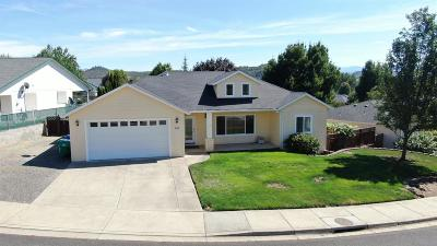 Eagle Point Single Family Home For Sale: 933 Ridgeview Drive