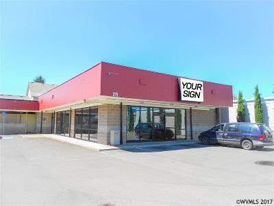 Salem Commercial For Sale: 275 Lancaster Dr