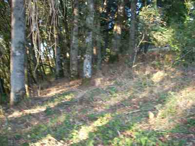 Turner Residential Lots & Land Active Under Contract: Rock View (Lot #3501) Dr
