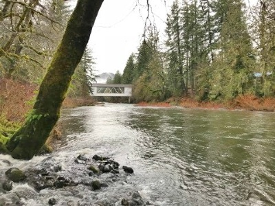 Sweet Home Residential Lots & Land For Sale: Santiam (Tl #2200) Hwy