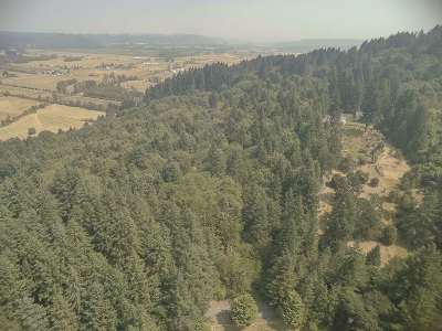 Scio Residential Lots & Land For Sale: Highway 226 (Tl #1500)