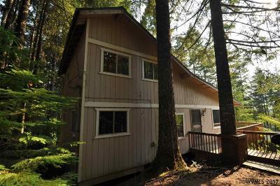 Detroit Single Family Home For Sale: 145 Howe St