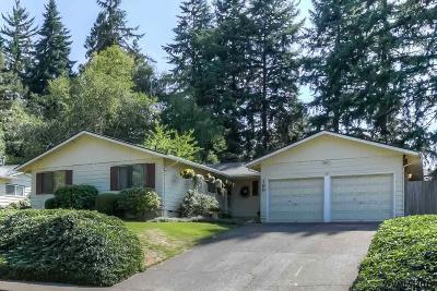 Salem Single Family Home For Sale: 166 Kevin