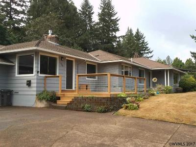 Salem Single Family Home For Sale: 930 Downs