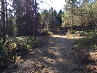 Scio Residential Lots & Land Active Under Contract: Richardson Gap (#00103) Rd