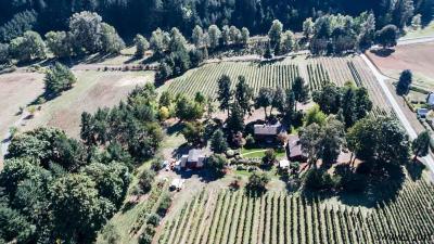 Salem Single Family Home For Sale: 3535 Vitae Springs Rd