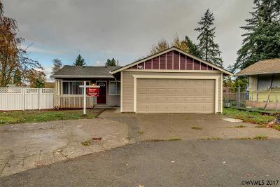 Salem Single Family Home For Sale: 3030 Loucks Ct