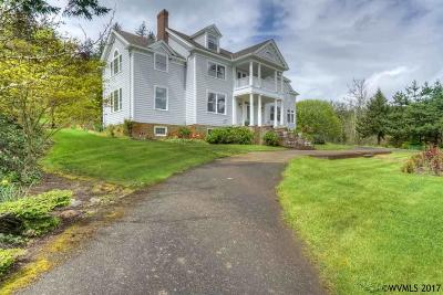 Salem Single Family Home For Sale: 3018 Brush College Rd