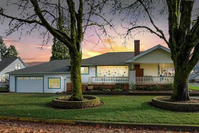 Dallas Single Family Home For Sale: 484 SW Washington St
