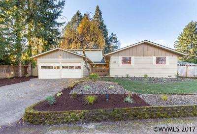 Salem Single Family Home For Sale: 522 Joseph Ct