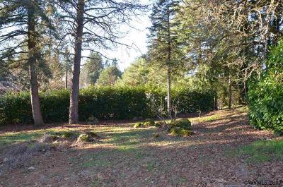 Salem Residential Lots & Land For Sale: Red Hill Dr