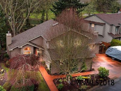 Keizer Single Family Home For Sale: 450 McNary Heights Dr