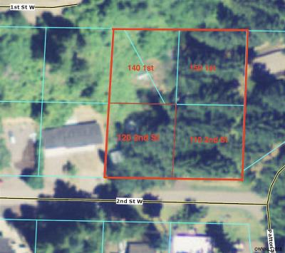 Detroit Residential Lots & Land For Sale: 110 2nd St