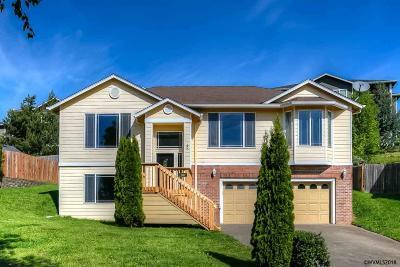 Salem Single Family Home For Sale: 1167 Horizon Ridge Ct